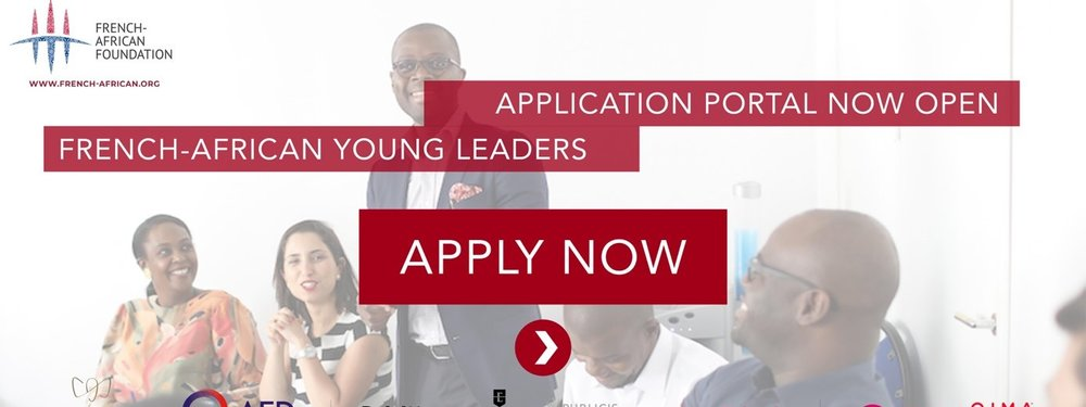 French-African Young Leaders : Application portal open