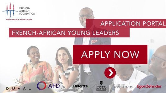French-African Young Leaders : appel à candidature